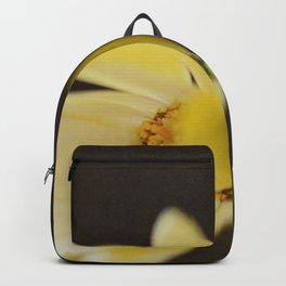 Hello, Goodbye Backpack