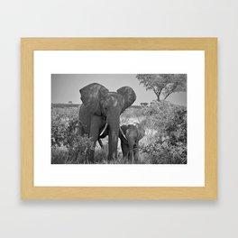 Elephant Mother & Baby Framed Art Print
