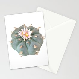 "Peyote ""Lophophora Williamsii"" Stationery Cards"