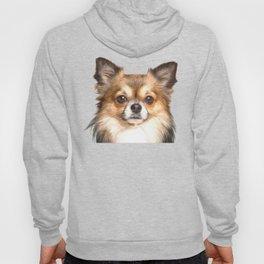 Chihuahua Portrait Hoody