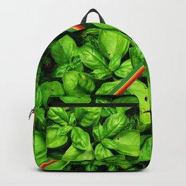 Raw Pesto Backpack