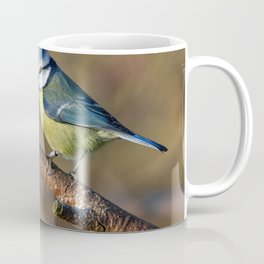 Wildlife Blue tit bird Coffee Mug
