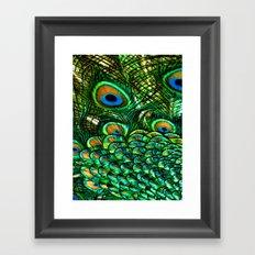 Pretty Peacock Framed Art Print
