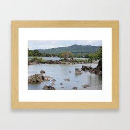 Home of the Alligator Framed Art Print