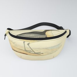 Vintage Print - A History of the Birds of Europe (1875) - Black-Headed Plover Fanny Pack