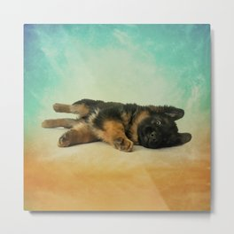 German Shepherd Puppy Metal Print