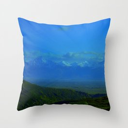 Valley Burst Throw Pillow