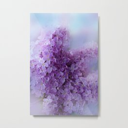 the beauty of a summerday -54- Metal Print