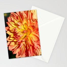 Radiant Orange Stationery Cards