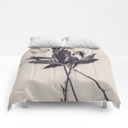 Lily Bouquet Comforters