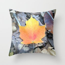Falling for Fall Throw Pillow