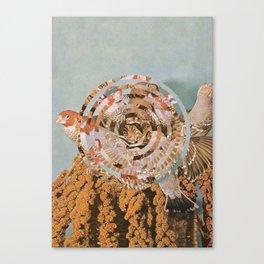 Habitat IV Canvas Print