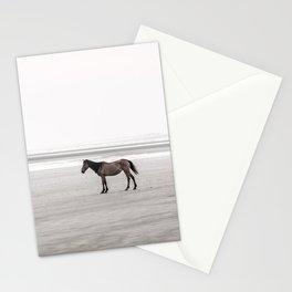 Horse a la playa Stationery Cards