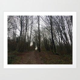 Montrose Park Trail February Art Print