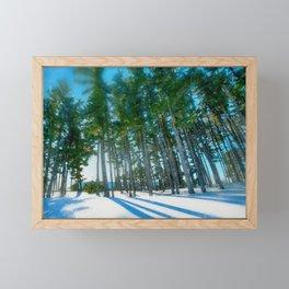 Pines in Winter near Munn Ice Arena at Michigan State University Framed Mini Art Print