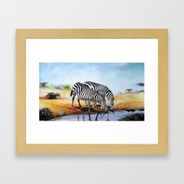 Painting of thirsty Zebras Framed Art Print