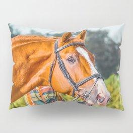 Horse head photo closeup Pillow Sham