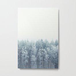 Frosty feelings Metal Print