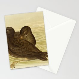 Vintage Print - The Birds of Australia (1890) - Fleshy-Footed Petrel / Wedge-Tailed Petrel Stationery Cards
