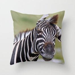 Shaking Zebra, Africa wildlife Throw Pillow