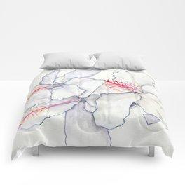 Hot Rods Comforters