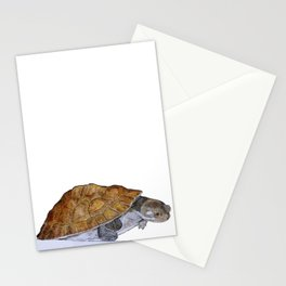 Happy Little Turtle Stationery Cards