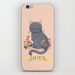 Chartreux Cat iPhone Skin