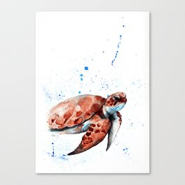 Wally the Turtle Canvas Print