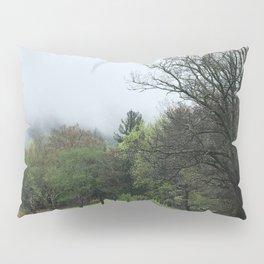 Cove Path Pillow Sham