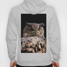 Owl wink Hoody