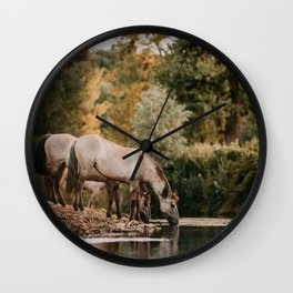 Drinking wild konik horses by the river | horse photography | photo | nature photographer Wall Clock