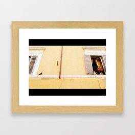 A Cat and a Bird in Rome  Framed Art Print