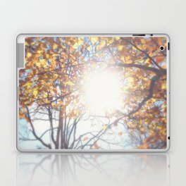 Autumn Afternoon Laptop & iPad Skin