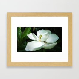 Light in the Darkness Framed Art Print