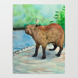 Capybara and friend Poster