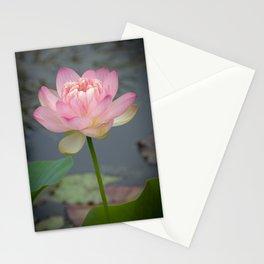 Sacred Pink Lotus - Vertical Stationery Cards