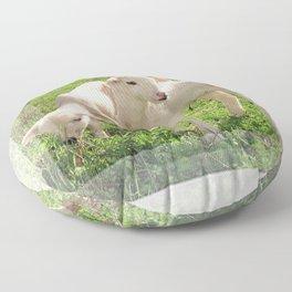 Spring Lambs Grazing On Farmland Floor Pillow