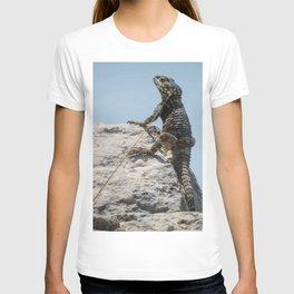 Lizard Sunbathing On A Rock Vector T-shirt