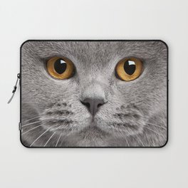 Cat in Grey Laptop Sleeve