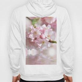 Spring 0130 Hoody