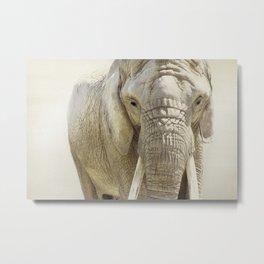 Elephant Photography | Wildlife Art | African | Nature Metal Print