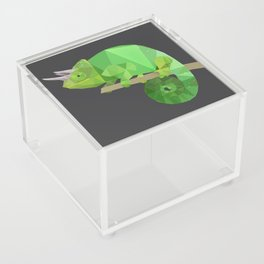 Low Poly Chameleon Acrylic Box