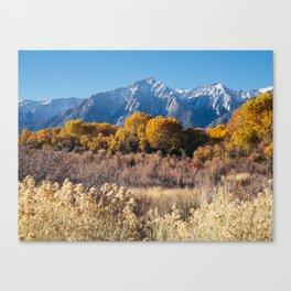 Autumn in the Eastern Sierras Canvas Print