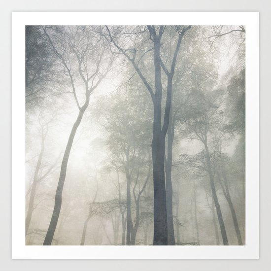 Cathedral of Trees Art Print