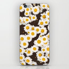 Daisy Daisies iPhone Skin