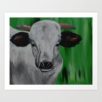 Cow 1 Art Print