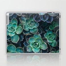Succulent Blue Green Plants Laptop & iPad Skin