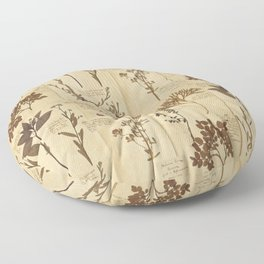 Dried plants - Vintage Herbarium Floor Pillow