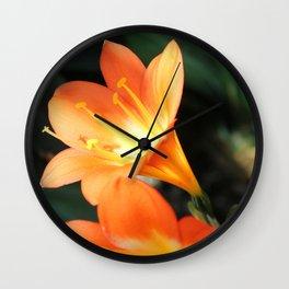 Peachy Petals Wall Clock