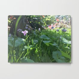Tiny forest Metal Print